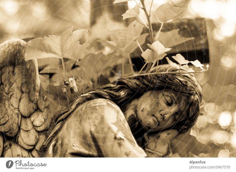ruhe sanft Engel Flügel Statue Stein Skulptur Kunst Denkmal alt Religion & Glaube Friedhof Tod Grabstein Frieden Symbole & Metaphern Grabmal Traurigkeit