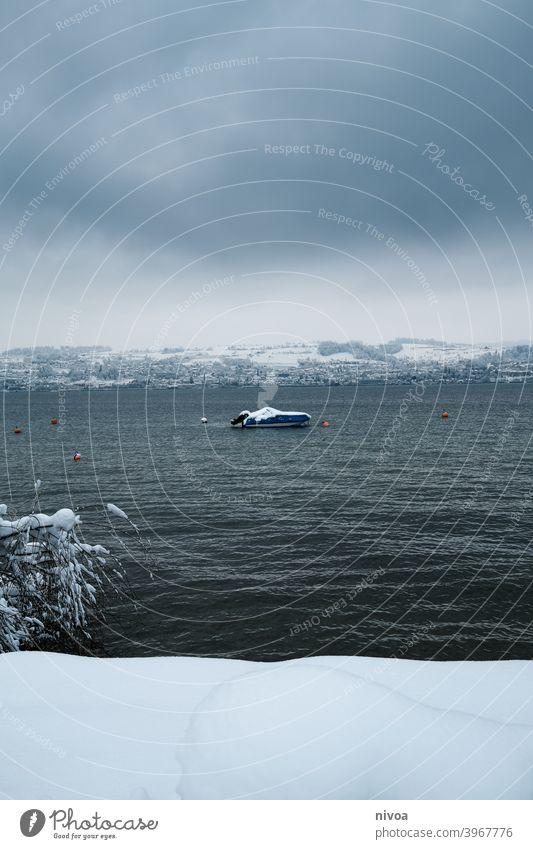 Boot auf dem Zürichsee im Winter zürichsee Schnee trüb Winterwetter eingeschneit Baum See Seeufer Berge u. Gebirge Landschaft männedorf Farbfoto Außenaufnahme