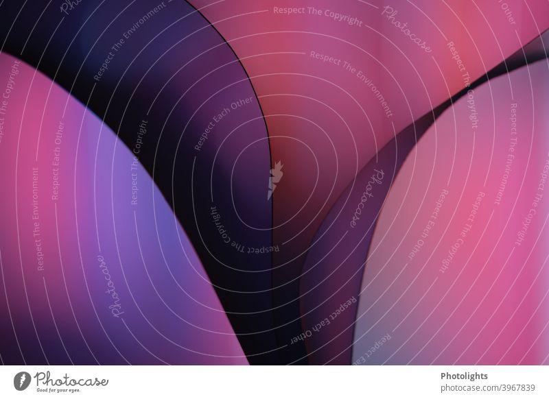 Linien auf violetten Hintergrund Form geschwungen rot blau Papier Farbfoto Studioaufnahme Nahaufnahme mehrfarbig Muster Strukturen & Formen abstrakt Farbe