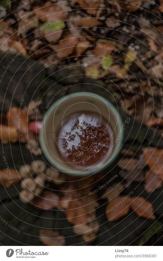 Ein Tasse Tee auf einem Baumstumpf im Wald, in der sich die nebenstehenden Bäume spiegeln Teetasse Laub Natur Herbst Außenaufnahme herbstlich Teetrinken