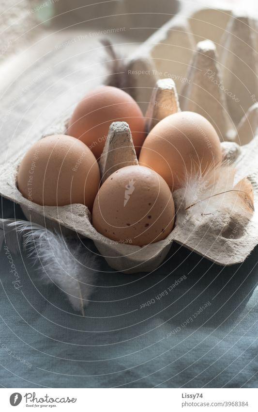 4 Eier in der Schachtel umspielt von Hühnerfedern im Morgenlicht Hühnereier Eierkarton Bio Innenaufnahme Ostern
