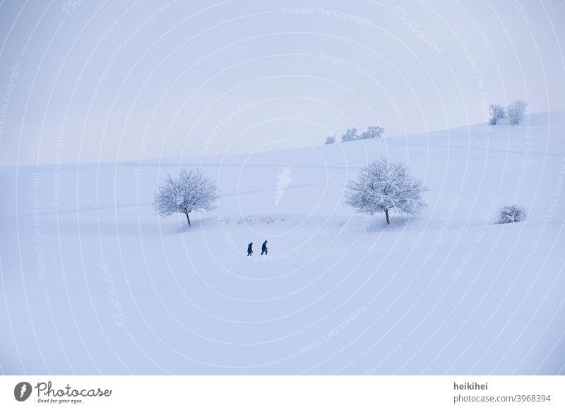 Verschneite Landschaft in der zwei Personen wandern Schnee Winter Baum kalt Eis Frost Raureif weiß Natur Himmel blau Monochrom Außenaufnahme gefroren frieren