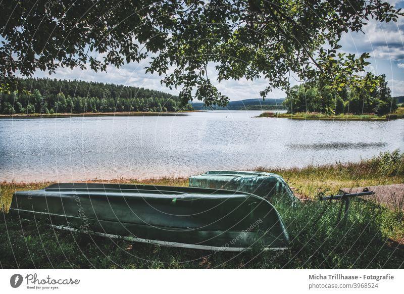 Blick auf die Talsperre Heyda, Thüringen See Seeufer Baum Schönes Wetter natürlich Erholung Sonnenlicht Wolken Himmel Wasser Landschaft Sommer Sommerurlaub