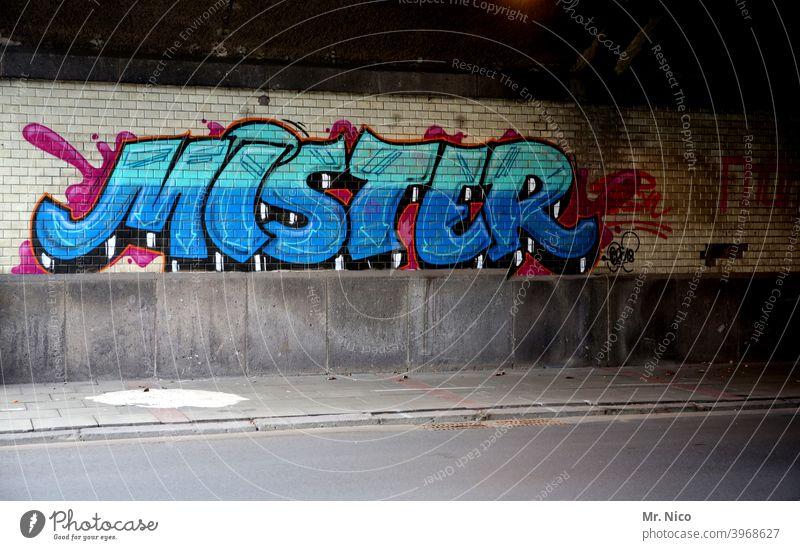 Vornamen I Mr. Graffiti Schrift sprayer gesprüht Wand schrift Text Typographie Schmiererei Straße Wege & Pfade Unterführung Straßenkunst mister Anrede Englisch