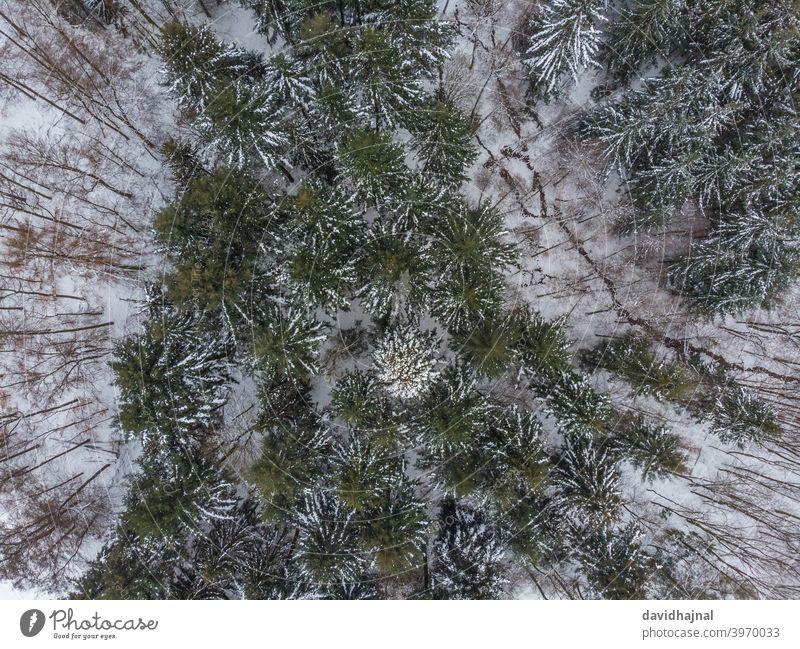 Winterlandschaft im Odenwald bei Lampenhain. Schnee Eis kalt gefroren abstrakt Antenne Dröhnen Luftaufnahme Landschaft Natur lampenhain Europa Deutschland Feld