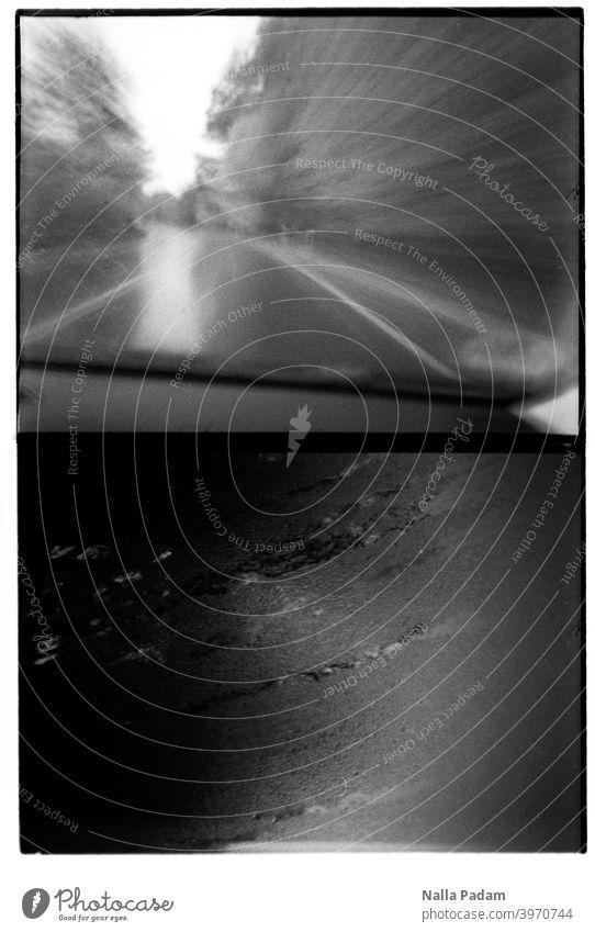 Bildduett 8 analog Analogfoto schwarzweiß Diana Mini Halbformat Straße Auto fahren Nässe nass Geschwindigkeit Bäume Bewegungsunschärfe Scheibe Spuren Wetter