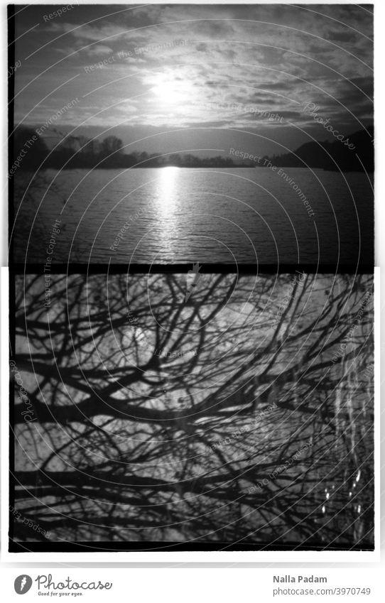 Stadtbildduett 3 analog Analogfoto schwarzweiß Halbformat Diana Mini Wasser Kemnader Stausee Sonne Sonnenuntergang Himmel Wolken zwei Bilder Äste Bäume