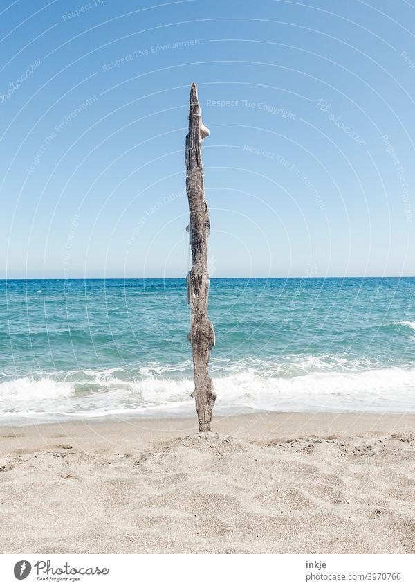 Schwemmholz vertikal Außenaufnahme blau Menschenleer Urlaub Küste Strand Sonne Meer Sommer Himmel Natur Schönes Wetter Wasser Horizont