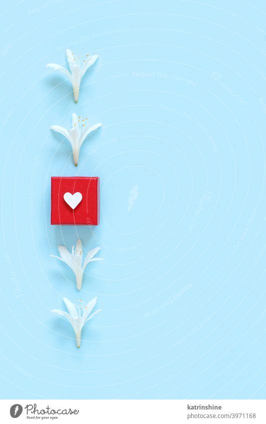 Weiße Blumen und rote Geschenk-Box auf einem hellblauen Hintergrund Geschenkverpackung Herz weiß hell-blau Draufsicht Frühling romantisch Pastell