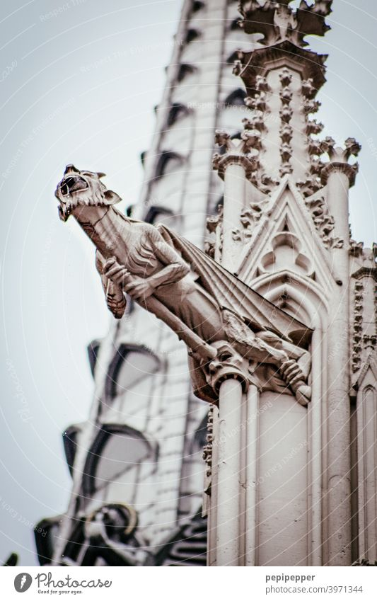 Steinfigur am Kölner Dom Kirche Kirchturm Kirchturmspitze Kirchenfenster Teufel Sehenswürdigkeit Wahrzeichen Farbfoto Außenaufnahme Religion & Glaube Bauwerk