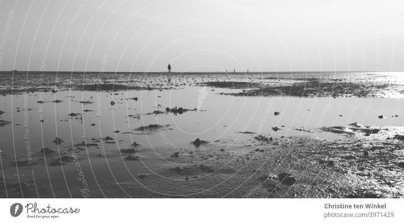 Einsamkeit...  Silhouetten von Spaziergängern im Watt Strand Wattenmeer Strandspaziergang Nordsee Nordseinsel Ebbe Niedrigwasser Meer Küste Gezeiten Horizont