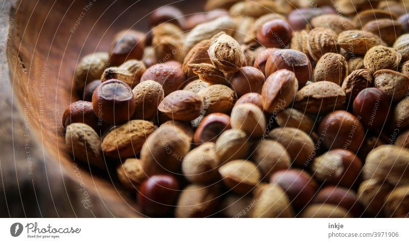 Eichhörnchenfutter Farbfoto Nahaufnahme Nüsse Futter Holz Natürlich Ernährung Erdnüsse Haselnüsse Mandeln Schale braun frisch unbehandelt Bioprodukte