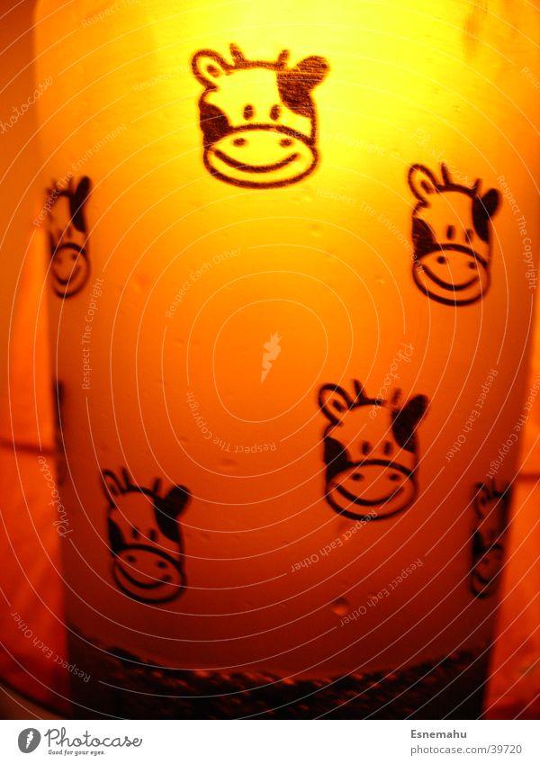 Kuh-Becher in orange 2 weiß dunkel schwarz Beleuchtung hell orange Häusliches Leben Glas Glas Lächeln rund Kuh Comic Becher durchscheinend Aufdruck