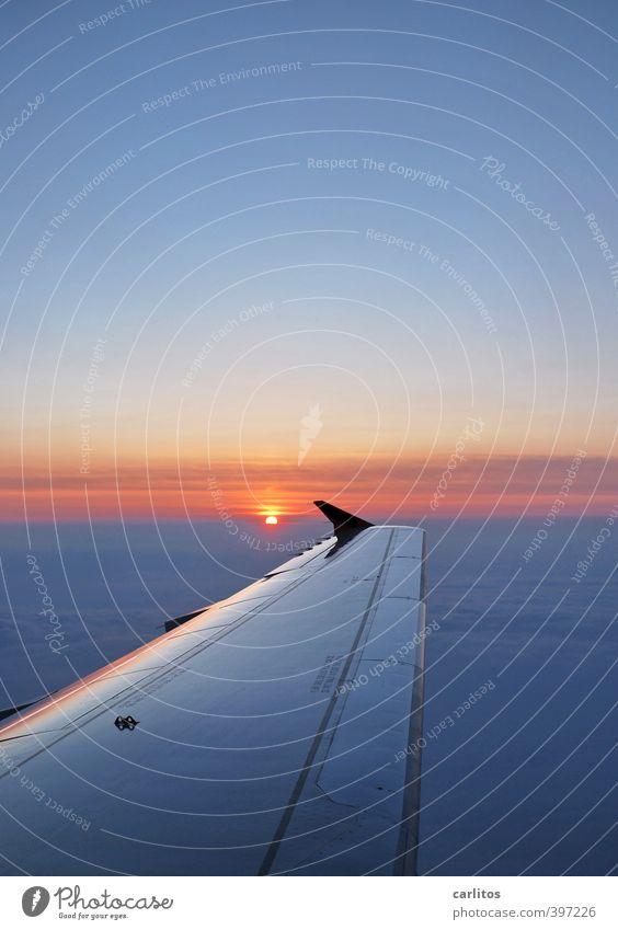 Abflug ins Wochenende Himmel Ferien & Urlaub & Reisen blau Sonne Ferne Umwelt Luft fliegen glänzend Orange Luftverkehr Schönes Wetter Urelemente Flugzeug