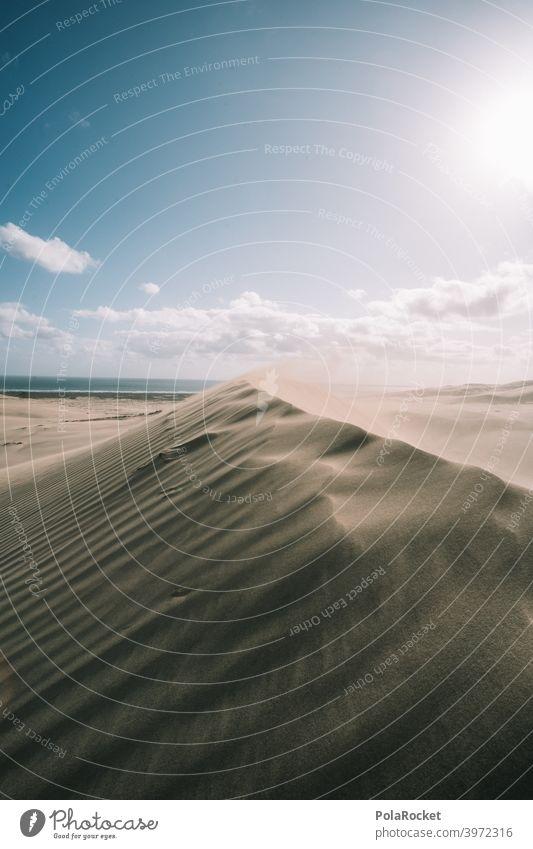 #AS# Wüstenliebe Düne Wind Wellen Sand Strand Stranddüne Ferien & Urlaub & Reisen Meer Küste Natur wüstenlandschaft wüstensand Wüstenpiste dünenlandschaft