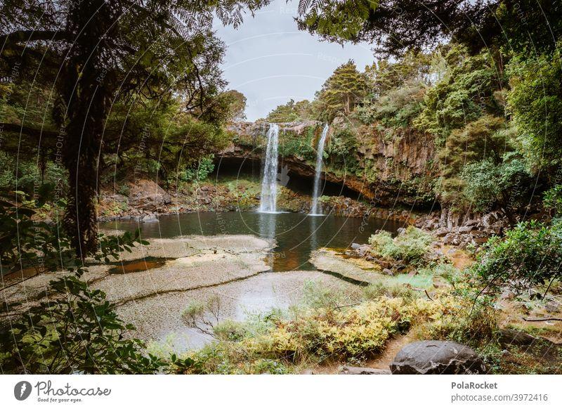 #AS# Wo sind die Fabelwesen? Ferien & Urlaub & Reisen beruhigend Wildnis Felsen Umwelt Pflanze Neuseeland versteckt Außenaufnahme Menschenleer