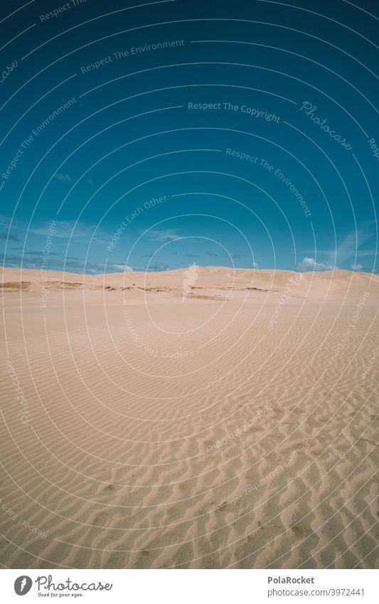 #AS# Sand Meer Wüste Düne Wind Wellen Strand Stranddüne Ferien & Urlaub & Reisen Küste Natur wüstenlandschaft wüstensand Wüstenpiste dünenlandschaft Himmel
