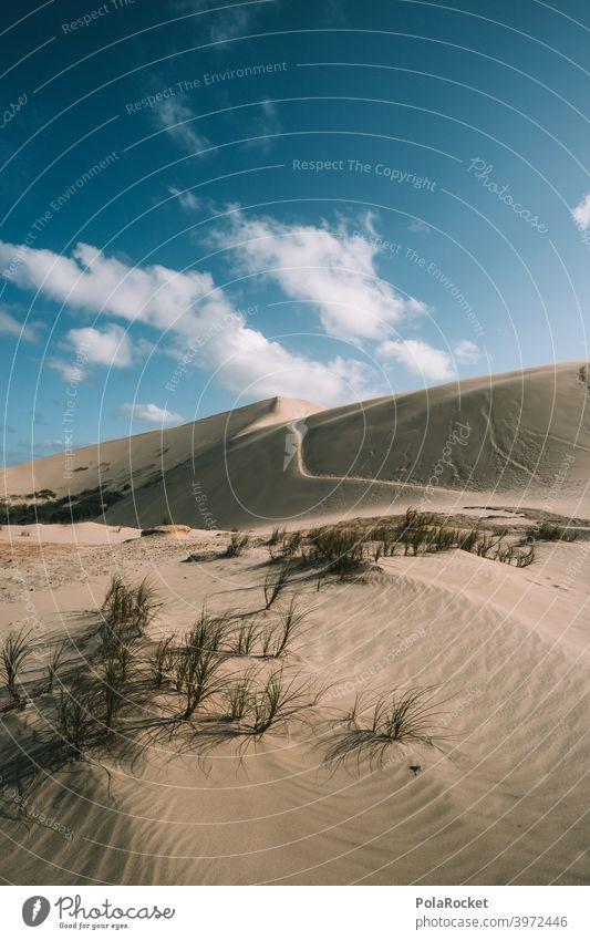 #AS# Sandarena Wüste Düne Wind Wellen Strand Stranddüne Ferien & Urlaub & Reisen Meer Küste Natur wüstenlandschaft wüstensand Wüstenpiste dünenlandschaft Himmel
