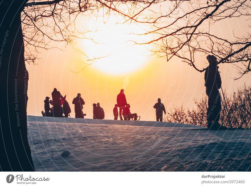 Rodeln in Berlin im Britzer Garten II Naturerlebnis Ferien & Urlaub & Reisen Lebensfreude Landschaft Tourismus Licht Kontrast Schatten Sonnenstrahlen
