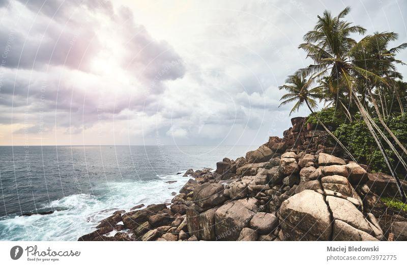 Felsenküste bei Sonnenuntergang, farbig getöntes Bild. MEER Wasser Meereslandschaft winken retro Handfläche Sommer Einsamkeit gefiltert Himmel keine Menschen