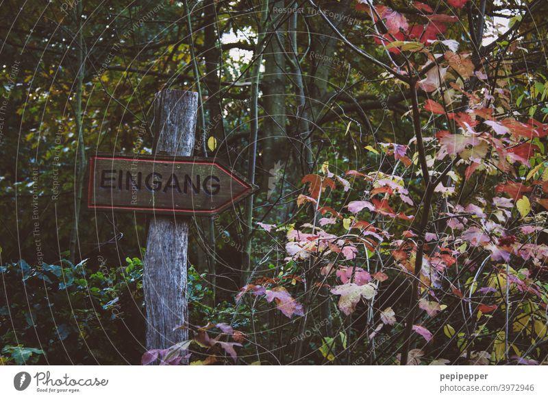 Schild Eingang in einem Wald Schilder & Markierungen Schilderwald Waldrand waldgebiet Waldlichtung Waldspaziergang Waldstimmung Waldweg Natur Baum Außenaufnahme