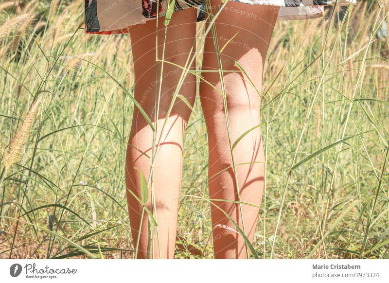 Niedriger Ausschnitt einer Frau, die inmitten von sich wiegenden Gräsern steht und das Konzept von Sommer und Frühling zeigt Achtsamkeit zurück zur Natur