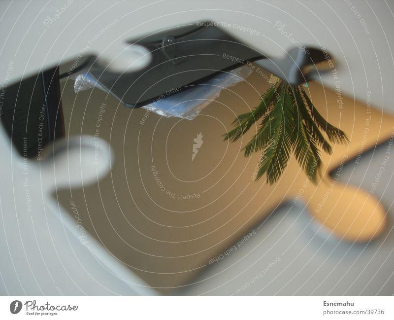 Palmenpuzzle Spiegel Puzzle Stil Reflexion & Spiegelung Spiegelbild Pflanze Teilchen Tisch grau grün dunkel Wand Schrank 2 Dinge Reflektion silber