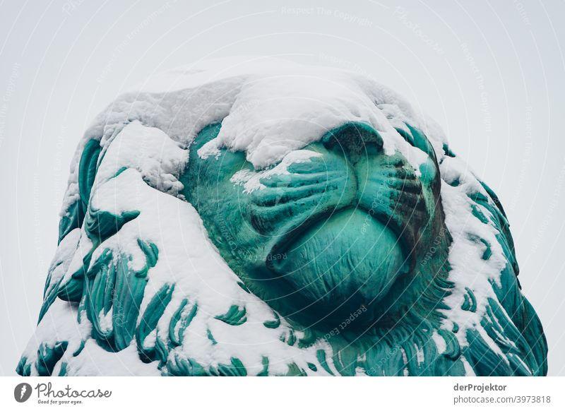 Flensburger Löwe mit Schnee bedeckt Winterstimmung Winterurlaub ästhetisch außergewöhnlich Textfreiraum Mitte Sonnenlicht Textfreiraum unten Textfreiraum oben