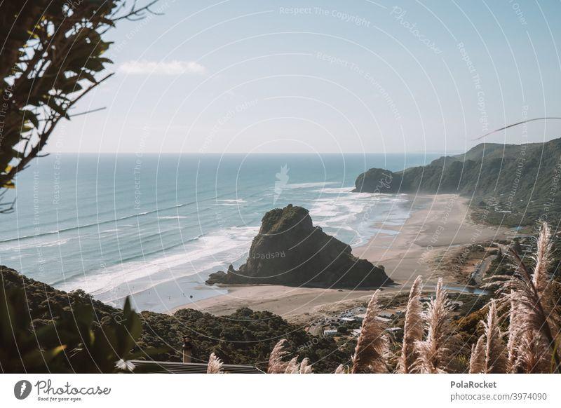 #AS# Piha Felsen Wellen Surfers Paradise Pampasgras Ebbe besonders Küste Wasser Surfen Strand Meer Surf-Wellen Meereslandschaft Meeresufer Horizont
