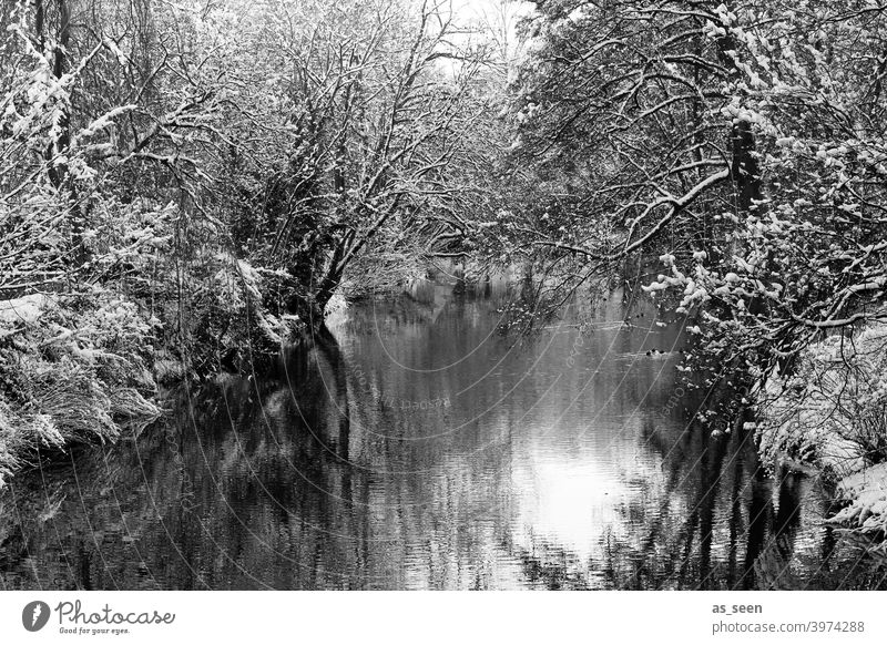 Winter Wonderland Fluss Schwarzweißfoto Schwarzweißfotografie Schnee kalt Baum Landschaft Außenaufnahme Natur Tag Menschenleer Umwelt Frost Eis Wetter schwarz