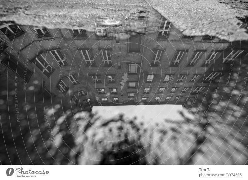 eine Pfütze auf einem Hinterhof in Prenzlauer Berg Stadt Berlin Hof Menschenleer Stadtzentrum Tag Haus Hauptstadt Altstadt Außenaufnahme Fenster Altbau Bauwerk