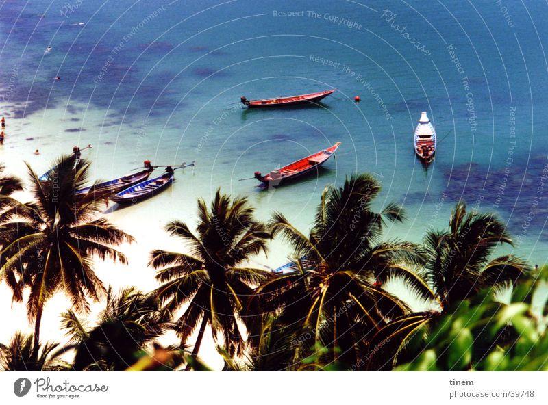 dies ist keine postkarte Thailand Meer Wasserfahrzeug Palme Physik Kokosnuss Ferne Korallen Nationalpark Schnorcheln Sonne Wärme blau Aussicht Im Wasser treiben