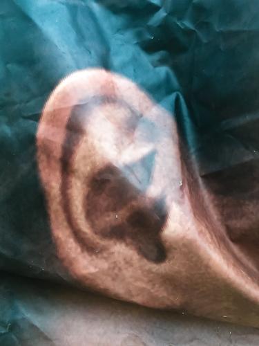 Poster mit Ohr ohr außenohr ohrläppchen gehör gehörgang wahrnehmung sinn sinnesorgan poster plakat bild abbild knick falte werbung außenwerbung portrait