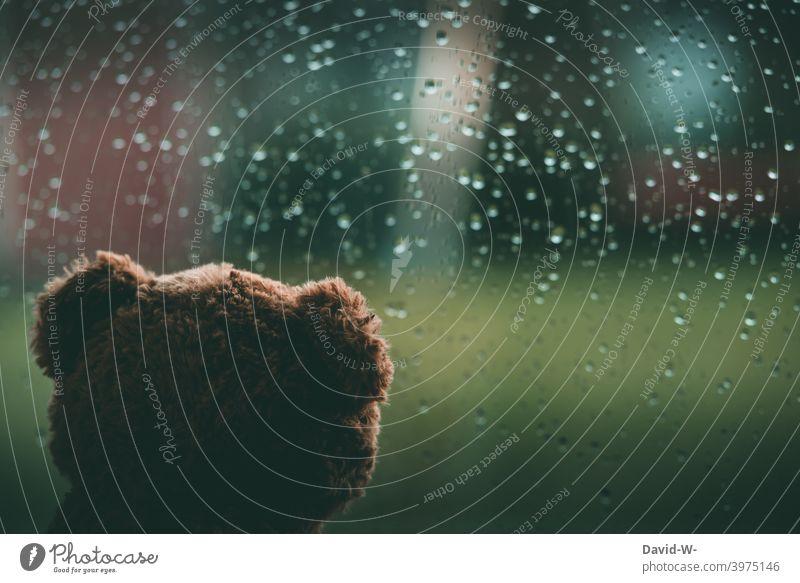 Regentag - Wettervorhersage Regen Unwetter Herbst Regentropfen Fensterscheibe Kindheit schlechtes Wetter Depression nass ungemütlich Kuscheltier