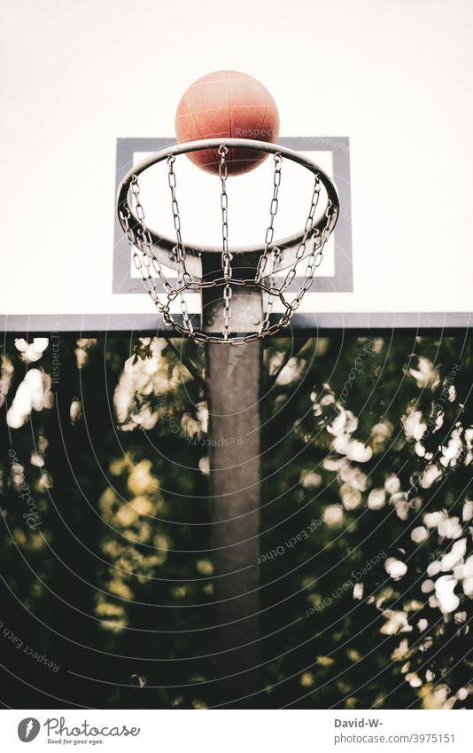 Basketball fliegt in einen Basketballkorb Erfolg fliegen Erfolgskonzept Treffer treffen Ball Korb Sport Spiel Ziel Punkt