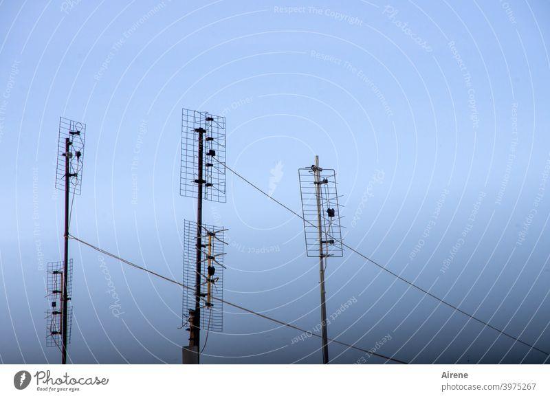 Kommunikationsdesign Antennen Unterhaltungselektronik Himmel nur Himmel Schönes Wetter Metall Stahl Linie Luft Fernsehen schauen Musik hören eckig einfach