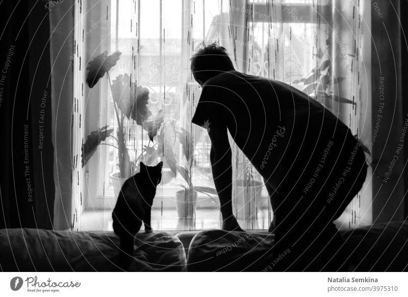 Schwarz-Weiß-Foto. Dunkle Silhouetten von Mann und Katze, die in ähnlichen Haltungen auf der Couch stehen und aus dem Fenster schauen. Haustier Schatten