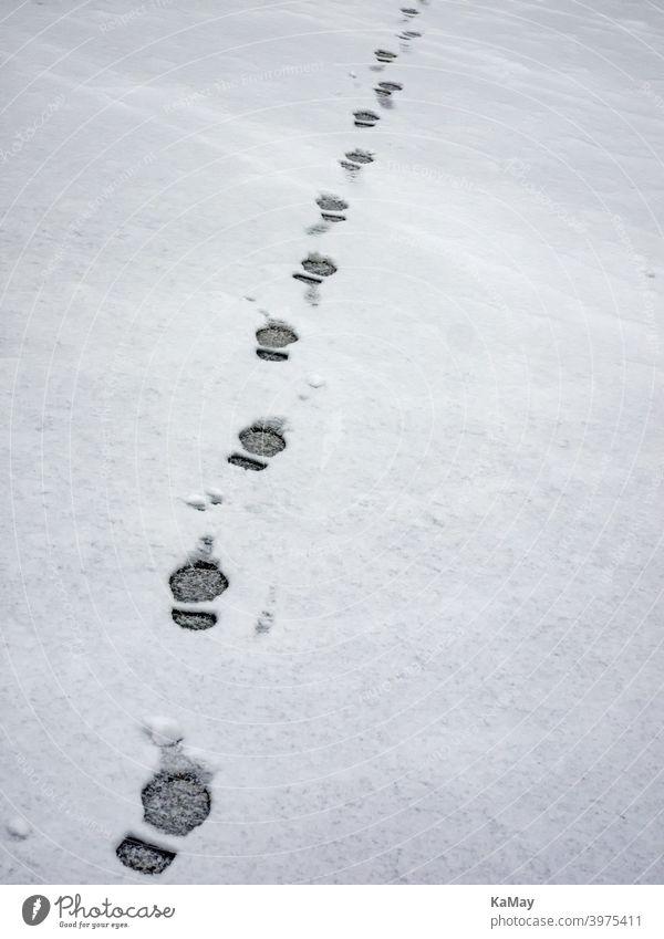 Fußspuren eines Menschen im Schnee Spuren Schritte Abdruck wandern allein weiß kalt Frost Winter Weite gefroren Eis leer Weg Füße Jahreszeit niemand vertikal