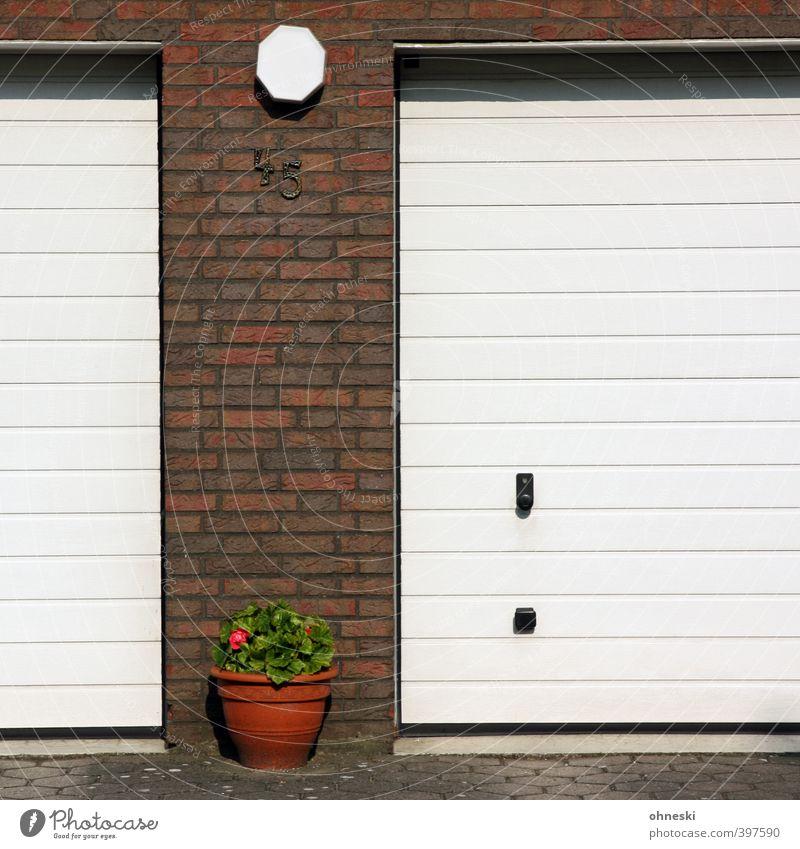 Sommerferien Blume Wand Mauer Gebäude Fassade Idylle Häusliches Leben Ziffern & Zahlen Blumentopf Garage Garagentor