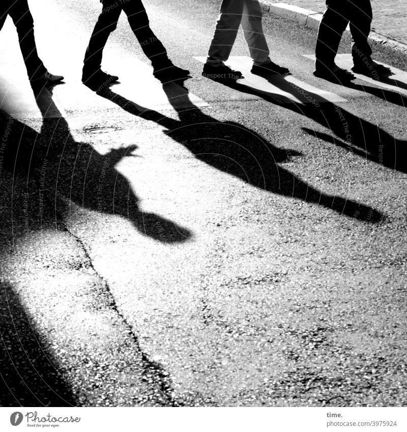 GegenLichtGestalten straße menschen Zebrastreifen überweg übergang gehen laufen asphalt urban hintereinander gemeinsam abbeyroad bordsteinkante vorbild