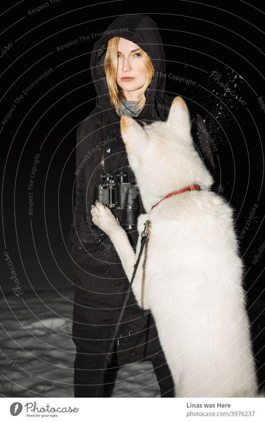 Blondes Mädchen spielt mit ihrem weißen Akita-Inu-Hund. Es ist eine kalte Winternacht. Eine schöne Frau spürt die eisige Temperatur, da ihre Wangen rot werden. Aus irgendeinem Grund hat sie auch ein Fernglas am Hals.