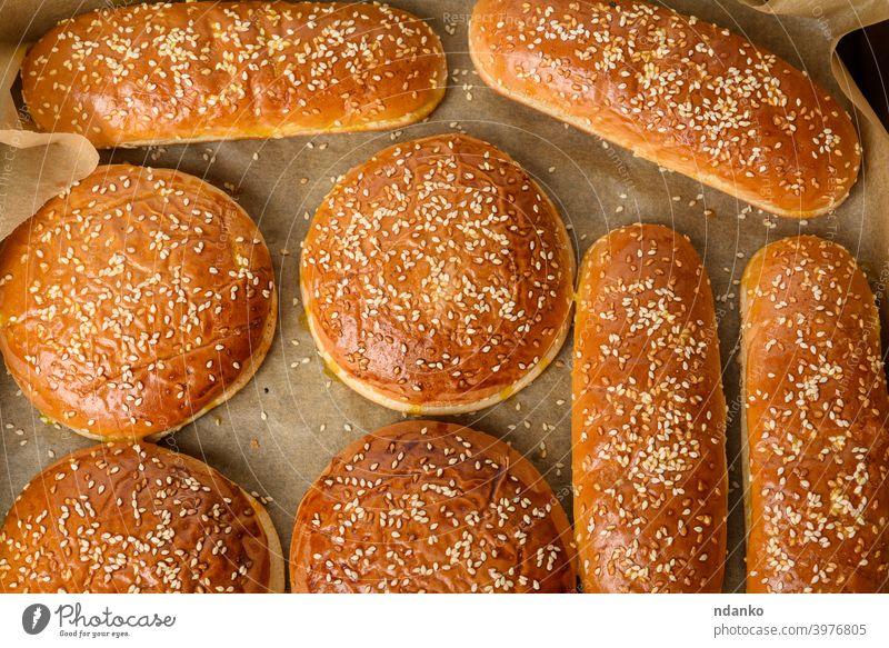 gebackene Sesambrötchen auf braunem Pergamentpapier, Zutat für einen Hamburger Brötchen Burger Cheeseburger klassisch Nahaufnahme Kruste lecker Teigwaren Essen