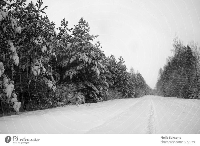 Nordperspektive / Landstraße im tiefen Winter / schwerer Schnee auf Nadelbäumen / schwarz-weiße Version der Unendlichkeit oben abstrakt Abenteuer Antenne schön