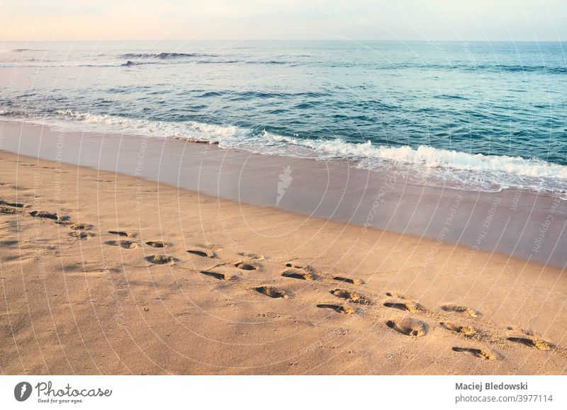 Fußabdrücke auf einem tropischen Sandstrand bei Sonnenuntergang. Fußspur Strand friedlich Windstille Urlaub MEER Wasser Sommer retro Meer sonnig Schritt Küste