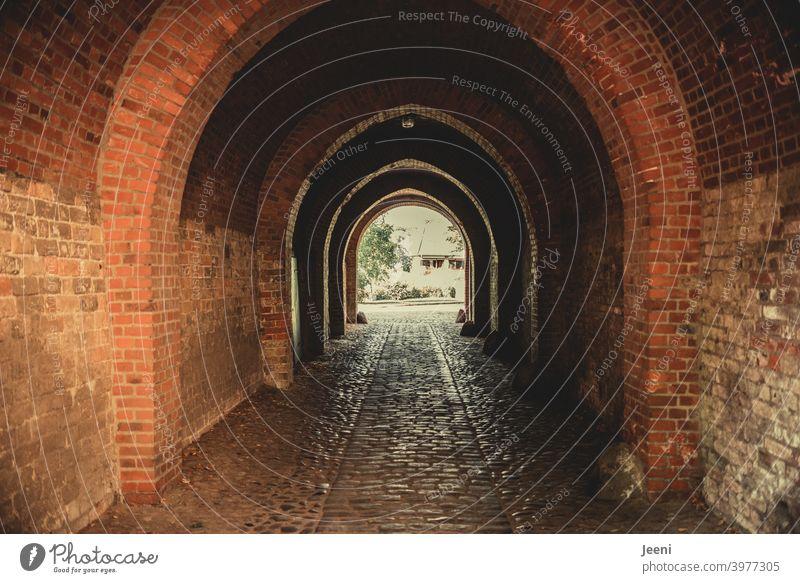 Alter historischer gemauerter Durchgang aus Backsteinen | Innenhof eines Doms | Gasse alt Mauer Bauwerk Kopfsteinpflaster Weg Weg nach vorne Wand Außenaufnahme