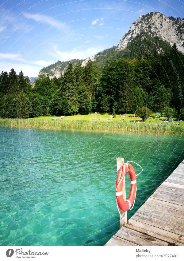 Türkisgrünes Wasser im Sommer bei Sonnenschein im Alpseebad Hohenschwangau in Schwangau bei Füssen im Allgäu im Freistaat Bayern See Gebirge Alpen Schwimmbad