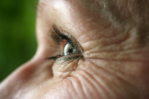 Falten ums Auge Frau Wimpern Blick Iris Regenbogenhaut Sinnesorgane Detailaufnahme weitsichtig kurzsichtig Augenfarbe Makro Augenlid Sehvermögen optisch