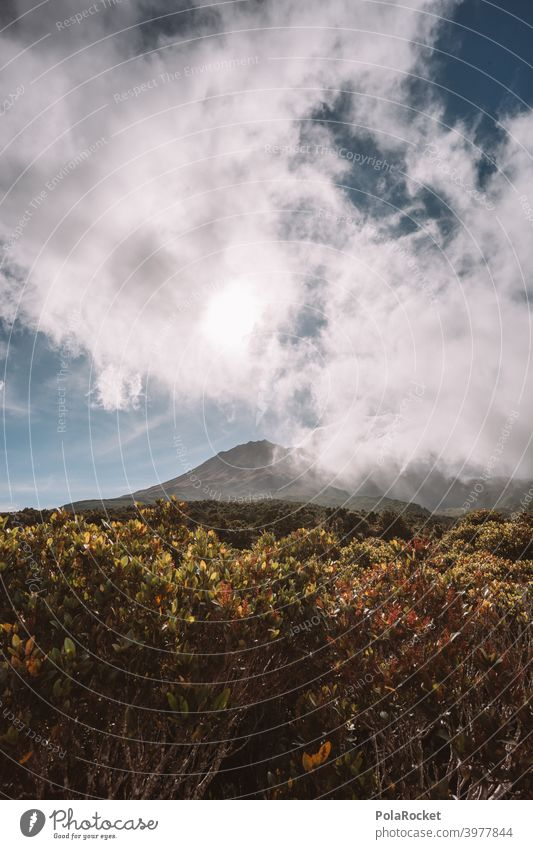 #AS# Mt. Taranaki back II taranaki Neuseeland Berge u. Gebirge Außenaufnahme Wolken Menschenleer Naturschauspiel regenfront Himmel Fernweh