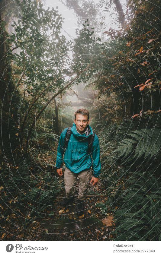 #AS# wanderer II Regenwald tropisch Wald Bäume Moos mystisch Dschungel Nebel Abenteuer Menschenleer Natur grün Landschaft natürlich Laubwerk unberührt