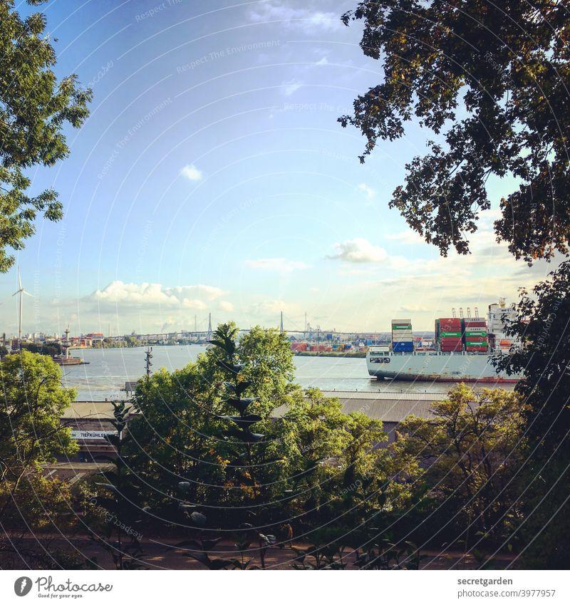 Blick auf die Köhlbrandbrücke. Ein Schiff zieht vorbei. Elbe Hamburg Hamburger Hafen Containerschiff Sommer Wasser Aussicht Himmel Bäume Rahmen Außenaufnahme